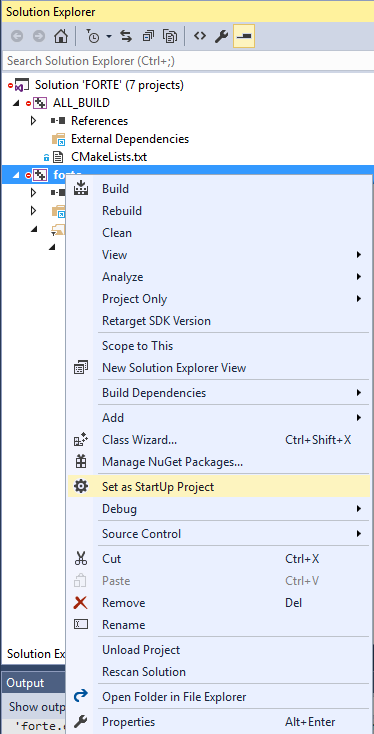 Set FORTE as main project in Visual Studio