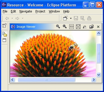 A basic image viewer